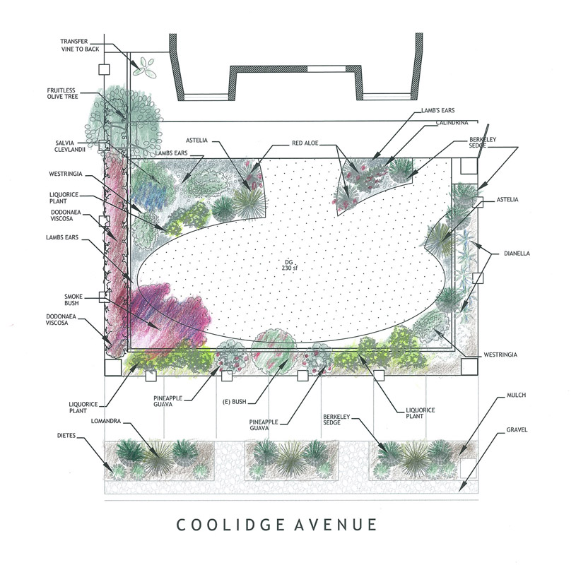 Coolidge Avenue